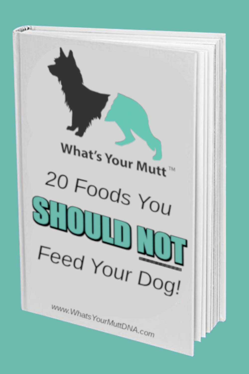 20 Things You Should Not Feed Your Dog book cover1