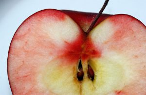 Close up of a half of a cut red apple.