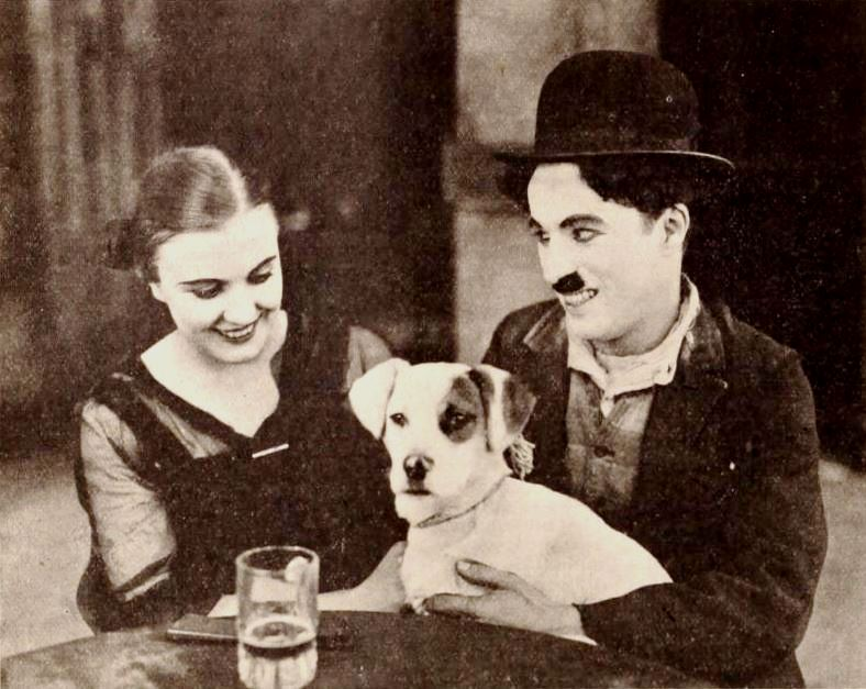 "What's Your Mutt DNA Photo from the 1918 film ""A Dog's Life"", showing actor Charlie Chaplin sitting with a woman, and petting a dog on his lap"