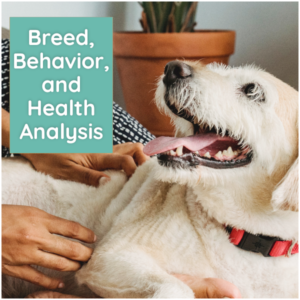 What's your Mutt DNA Breed Behavior and Health2