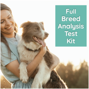 What's your Mutt DNA Full Breed Test