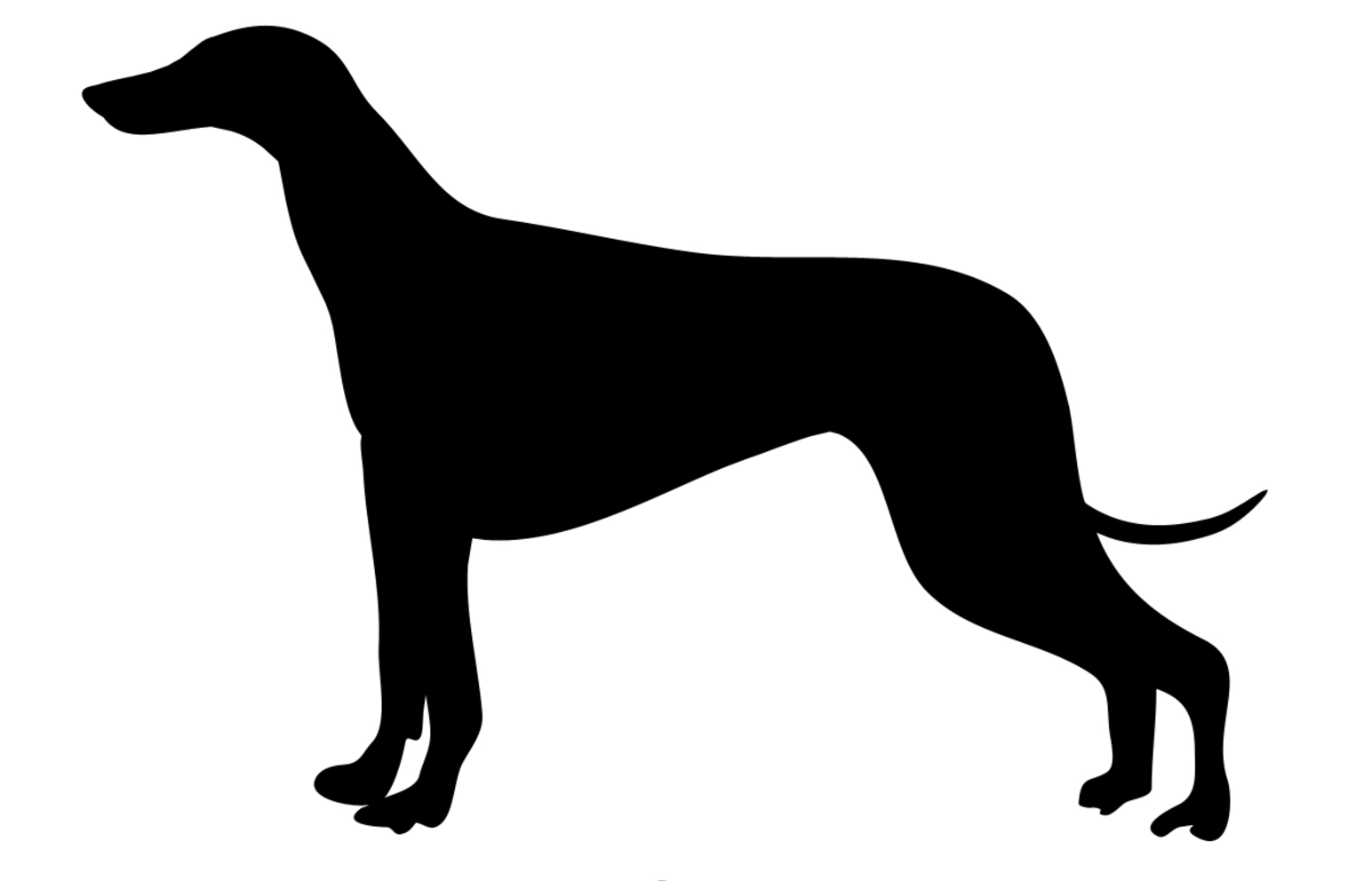 Black silhouette of generic sighthound dog