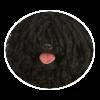 puli circle